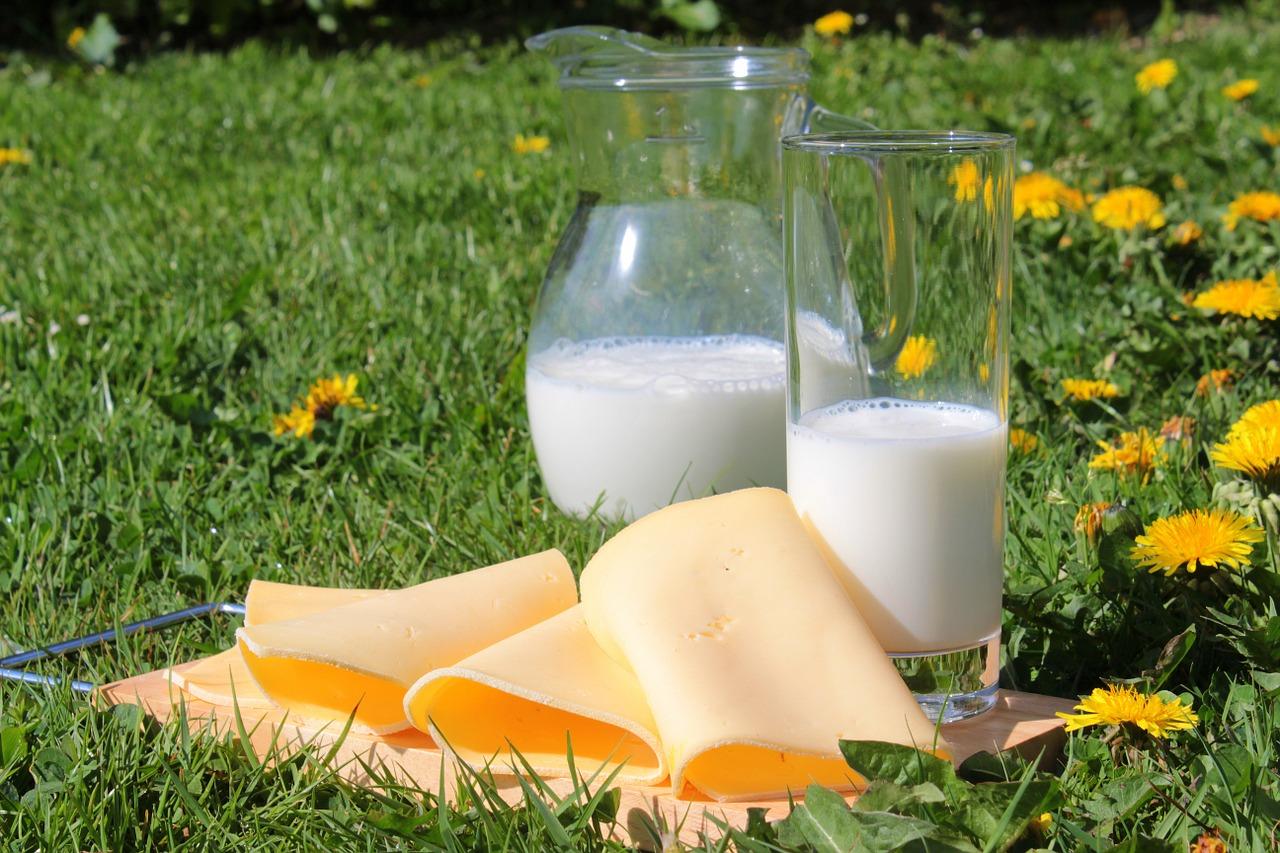 Cosa mangiare. la dieta per l'osteoporosi